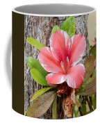 A Trees Life Coffee Mug