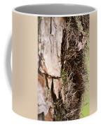 A Treetrunk Abstract Coffee Mug