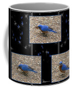 A Typical Eastern Bluebird's Lunch - Featured In Comfortable Art Group Coffee Mug