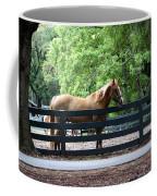 A Very Beautiful Hilton Head Island Horse Coffee Mug