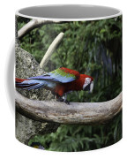 A Very Colorful And Bright Macaw Bird Perched On A Branch Coffee Mug