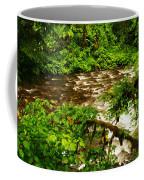 A View Of Eagle Creek Coffee Mug
