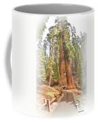A Walk Among The Giant Sequoias Coffee Mug
