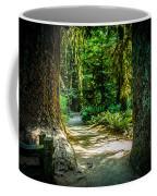 Pathway Cathedral Grove Coffee Mug