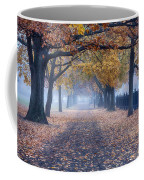 A Walk In Salem Fog Coffee Mug