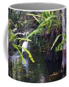 A Walk In The Glades Coffee Mug