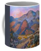 A Warm Spring Walk In The Cove Coffee Mug