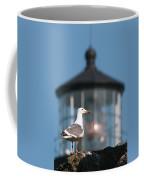 A Western Gull  Larus Occidentalis Coffee Mug