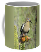 A White Winged Dove  Coffee Mug