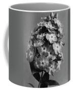 A Widar Coffee Mug
