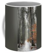 A Winters Path Coffee Mug