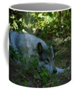 A Wolf Naps Coffee Mug