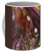 Abalone Shell Coffee Mug