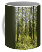 Abandoned Forest In Scott Arkansas Coffee Mug