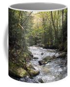 Abol Falls 4368 Coffee Mug
