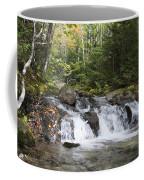 Abol Falls 4392 Coffee Mug