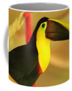 About A Beak  Coffee Mug
