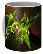 Above The Bamboo Coffee Mug by Olivier Le Queinec