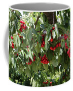Abundant Cherries Coffee Mug