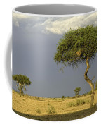 Acacia Trees On Serengeti Coffee Mug