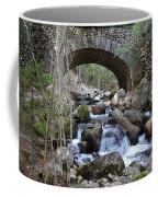 Acadia National Park Bridge Coffee Mug
