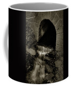 Acadia Waterfall Coffee Mug