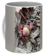 Acorn A Copia Coffee Mug