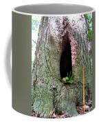 Acorns And Incense Coffee Mug