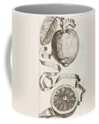Adam's Apple Coffee Mug by Cornelis Bloemaert