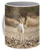 Addax Addax Nasomaculatus Coffee Mug