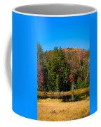 Adirondack Color IIi Coffee Mug