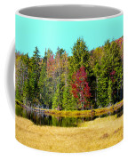 Adirondack Color Iv Coffee Mug