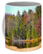 Adirondack Color Near Old Forge New York Coffee Mug