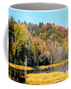 Adirondack Color V Coffee Mug