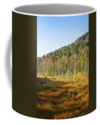 Adirondack Color Vi Coffee Mug