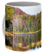 Adirondack Color Viii Coffee Mug