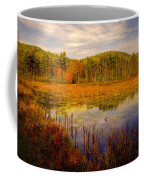 Adirondack Pond II Coffee Mug