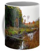 Adirondack Pond Iv Coffee Mug