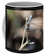 Adorable Dragonfly With Border Coffee Mug