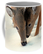 Adoring Love Coffee Mug
