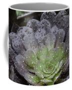 Adorned By Raindrops Coffee Mug