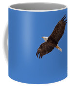 Adult Bald Eagle Soaring Haliaeetus Leucocephalus Coffee Mug