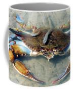 Adult Male Blue Crab Coffee Mug