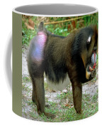 Adult Male Mandrill Papio Sphinx Coffee Mug