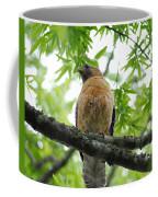 Adult Red Shouldered Hawk Coffee Mug