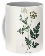 Aethusa Cynapium From Phytographie Coffee Mug