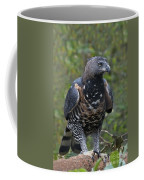 African Crowned Eagle Coffee Mug