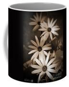 African Daisy Named African Sun Coffee Mug