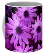 African Daisy Photo Digital Art Coffee Mug