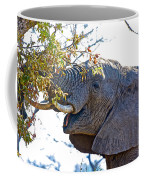 African Elephant Browsing In Kruger National Park-south Africa Coffee Mug